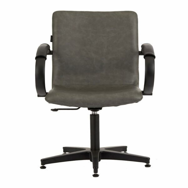 4467 Matilda Textured Charcoal Salon Chair 1