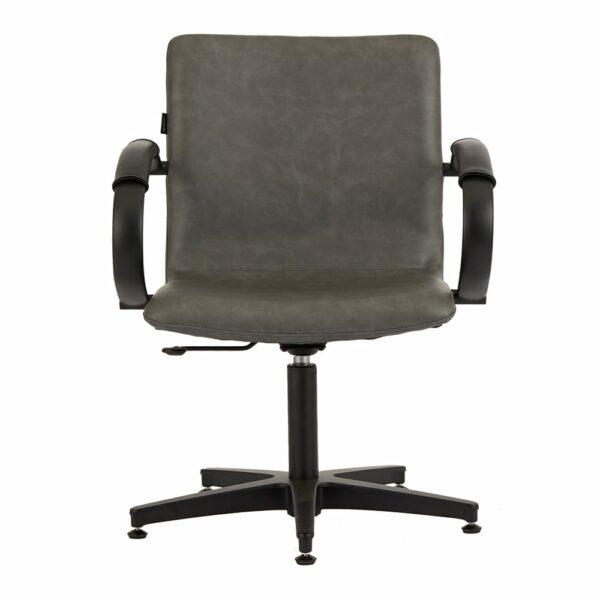 4467 Matilda Textured Charcoal Salon Chair 1