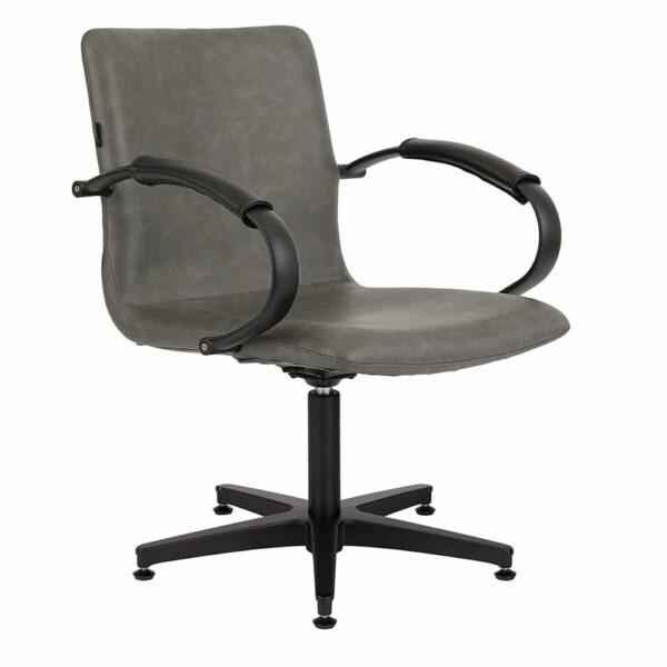 4467 Matilda Textured Charcoal Salon Chair