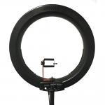 Ring-Light-Salon-2