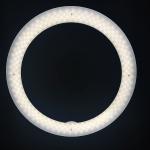 Ring-Light-Salon-6