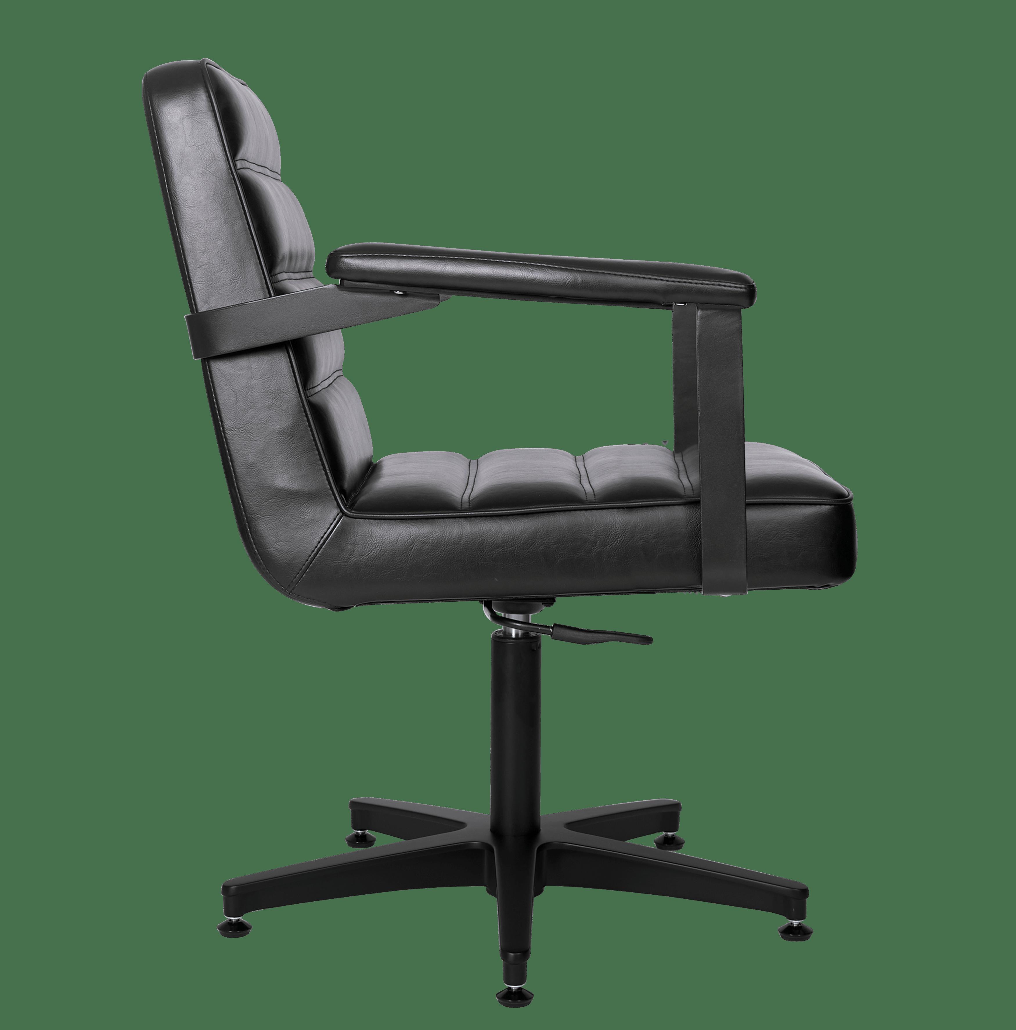 4152-Franka Styling Chair Side