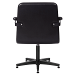 4153-Franka Styling Chair Back