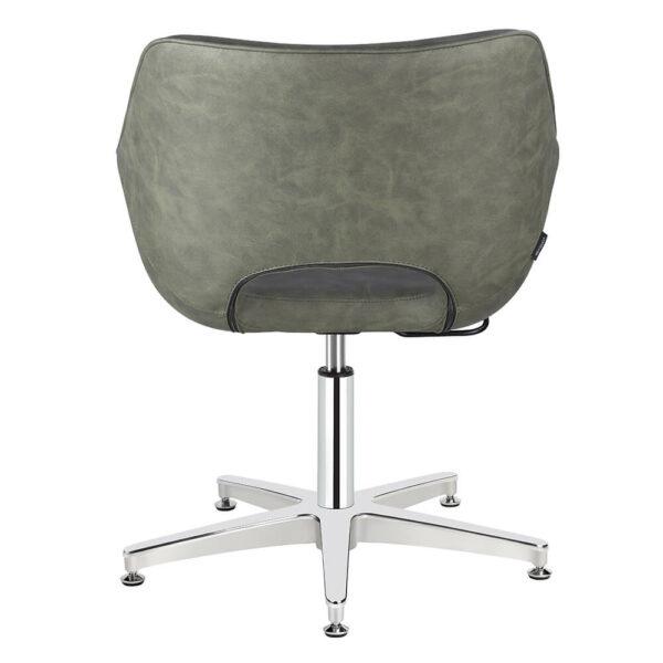 4109-SG Dawn Sage Green Salon Chair Back