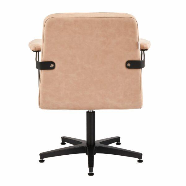 4152-B Franka Blush Salon Chair Back